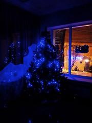 Скоро Новый год! / New Years is soon! (msergeevna) Tags: новыйгод prestigio елка рождество christmas newyear
