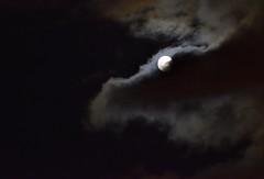_DSC3261 : cache cache avec la lune (pascalvu1) Tags: france moonlight d7200