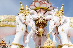 Elephant Kingdom (lorenzoviolone) Tags: finepix fujix100s fujifilm fujifilmx100s x100s mirrorless travel:southeastasia=2017 bangkok krungthepmahanakhon thailand th