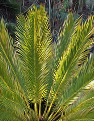 Palm (Cornishcarolin. Just moved house!! BUSY!!! xxxxxx) Tags: cornwall httpswwwedenprojectcom nature trees palmfronds leaves oilfilter filters oil light 1001nights 1001nightsmagiccity 1001nightsmagicgarden