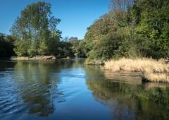 Photo of Near Cenarth Falls