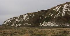 Autumn: The White Cliffs of Dover (zelart) Tags: autumn dover chalk