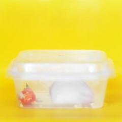 chilli and onion (mohamedyamin_masop) Tags: yellow minimalism still leicatl2