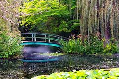 IMG_4204 Monet (Cyberlens 40D) Tags: nj culture cultural art sculptures garden exhibit foliage pond lilies nature trees plants botanical bridge monet reflection mist fog platinumheartaward