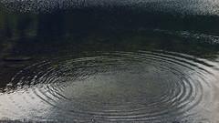 Ballachulish slate quarry, Scotland, August 2018 (Elisabeth Redlig) Tags: pond water redlig oban scotland uk travel nature scenery travels quarry slate ballachulish elisabethredlig canon ripples