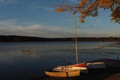 October morning (humbletree) Tags: wingrapark lakewingra madisonwisconsin autumn october morninglight