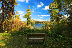 Otisco Lake Preserve (Matt Champlin) Tags: autumn fall foliage 360 vr virtual reality otisco flx fingerlakes otiscolake fllt virtualreality spherical canon 2018 travel hike hiking home life nature landscape peace peaceful lake forest trees
