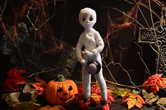 Still working hard on the studio .;_; (Real Salica) Tags: halloween mummy minidollfiedream msd volksmdd mdd inyl volks volksusa volksdd 14scale 45cm vinyl japanese anime action figure