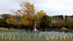 Fernhill Cemetery October 2018 7084 16x9 b (DaveyMacG) Tags: saintjohn newbrunswick canada fernhill cemetery autumn fall