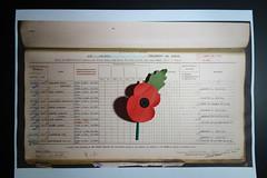 We Will Remember (tsbl2000) Tags: poppies ww1 19141918 war britishlegion armedforces