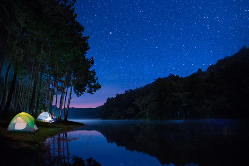 Landscape of Night camping with stars in Pang ung pine woods forest and nature