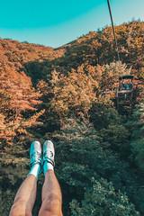 Location : Jeonju (S.korea) (KenPhotographys) Tags: travelphoto travelasia travel travelphotograhy travelworld korean korea asia travelkorea seetheworld snapshot snap scenery street streetfashion skyporn southkorea solotravel 5d 5dmakr3 50mm 500px 7dmark2 7d canon canonphtography