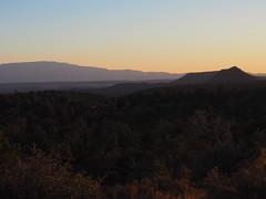 P6309787 (carriemoranphotos) Tags: arizona sedona redrocks trees travel sunrise sunset red usa roadtrip