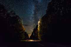 In Search of Light (free3yourmind) Tags: milky way night sky starsstarry long exposure trees forest nature light search torch man looking watching belarus