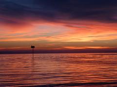 Lake Constance (karldue) Tags: lakeconstance bodensee lindau colors sunset karldue landscape