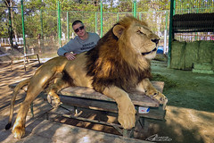 Me with the King of the Forest. (alvarolsalmeida) Tags: lion lujan king lionking