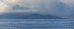 holy isle. orange and red buoys. (RCB4J) Tags: ayrshire clydecoast firthofclyde irvinebeach jakob rcb4j ronniebarron scotland sonyslta77v sonydt18250mmf3563 art babygrace dobermanterrier dogs photography play running sand sea siameselurcher trailhound