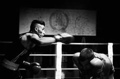 37618 - Hook (Diego Rosato) Tags: boxe boxing pugilato boxelatina ring match incontro rawtherapee nikon d700 2470mm tamron pugno punch bianconero blackwhite dodge schivata hook gancio