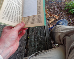IP270: Sitting for a read (Thiophene_Guy) Tags: thiopheneguy originalworks olympustoughtg4 tg4 olympustg4 olympusstylustg4 tough ironphotographerchallenge utata:project=ip270