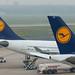 Lufthansa Tails