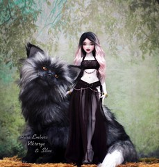 🐺 Devotion (pure_embers) Tags: pure embers bjd msd 14 doll dolls uk youpladolls vana youpla girl viktorya pureembers embersviktorya photography photo ball joint white purple resin portrait dark ombre hair silver fox artdoll animal friends fantasy magical