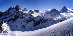 Panorama sulle Alpi Pennine salendo alla Punta Kurz (3.496 m) (giorgiorodano46) Tags: luglio1997 july 1997 giorgiorodano analogic mountain landscape panorama mountainlandscape alpi alpes alpen alps italy svizzera suisse