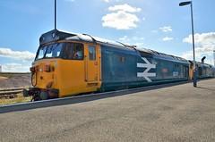 50011 'Centurion' (stavioni) Tags: class50 hoover diesel rail railway train locomotive 50049 50007 50011 50006 centurion hercules neptune defiance