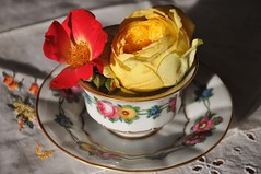 *** (Gali-Dana) Tags: porcelain coffeecup rose dogrose stilllife embroidery serviette napkin yellow red