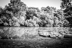 The Lake (Phil Roeder) Tags: newyorkcity nyc manhattan centralpark blackandwhite monochrome leica leicax2 lake boat reflection