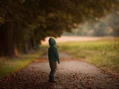 Chestnutsway (agirygula) Tags: familyfirst kid kiddo chestnut chestnutway tree autumn warm cold way childhood walking