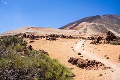 Montaña Blanca (Teide/Tenerife/Espagne) (PierreG_09) Tags: montañablanca teide parcnational volcan volcanique volcano pathscaminhos parcnationalduteide