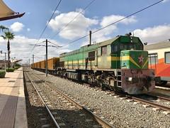 Marrakech 11/10/2018 (Brad Joyce 37) Tags: sunny locomotive sunshine photo iphone africa morocco freight diesel train marrakech