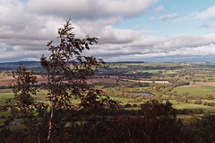 Otley Chevin Forest 8 (gstamets) Tags: otley otleychevin england yorkshire leeds forest chevinforest woods woodlands nature hiking outdoors trees