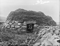 In splendid isolation (National Library of Ireland on The Commons) Tags: robertfrench williamlawrence lawrencecollection lawrencephotographicstudio thelawrencephotographcollection glassnegative nationallibraryofireland waterville cokerry oldruins holyisland ivycovered saintfinan cell finan churchisland countykerry finanoflindisfarne loughcurrane locationidentified