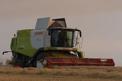 Claas Lexion 670 Montana Combine Harvester cutting Spring Barley (Shane Casey CK25) Tags: claas lexion 670 montana combine harvester cutting spring barley wgh watergrasshill grain harvest grain2018 grain18 harvest2018 harvest18 corn2018 corn crop tillage crops cereal cereals golden straw dust chaff county cork ireland irish farm farmer farming agri agriculture contractor field ground soil earth work working horse power horsepower hp pull pulling cut knife blade blades machine machinery collect collecting mähdrescher cosechadora moissonneusebatteuse kombajny zbożowe kombajn maaidorser mietitrebbia nikon d7200