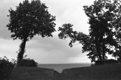 Udsigt til mere regn (holtelars) Tags: asahi pentax spotmatic sp m42 supertakumar takumar 28mm f20 film 35mm analog analogue ilford fp4 ilfordfp4 100iso d76 bw blackandwhite monochrome filmphotography filmforever ishootfilm larsholte homeprocessing jobo atl1500 gilleleje denmark danmark landscape seascape tree melancholy