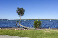 Lake Macquarie Scene (oz_lightning) Tags: australia manneringpark nsw newcastle sonyrx100iii boats lake landscape nature seascape water newsouthwales aus