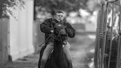 Pony Express (Frank Fullard) Tags: frankfullard fullard candid street portrait cowboy rider jockey ballinasloe horse fair pony ponyexpress galway bareback saddle equestrian irish ireland face expression monochrome black white blanc noir
