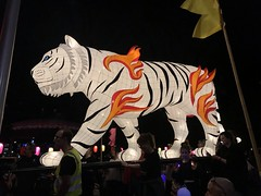 moon lantern festival 2018-44 (bill doyle [mobile]) Tags: moonlanternfestival color iphone7plus 2018 colorful elderpark billdoyle adelaidefestival ozasia lights communityevent southaustralia southaustralian community ozasiafestival sa lanternparade moonlantern adelaide colourful colour lantern iphone7 parade