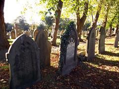 Long Shadows (missemorris) Tags: graveyards graveyard cemetery headstones shadow goldenhour autumn leaves