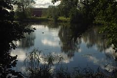 Peegeldus veel (Jaan Keinaste) Tags: pentax k3 pentaxk3 eesti estonia harjumaa raevald jürialevik tiik vesi water peegeldus reflection loodus nature