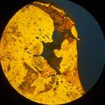 Planeet-Aarde-6-C1I1 thumbnail