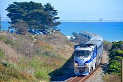 Emma Wood Surfliner (MikeArmstrong) Tags: amtrak pacific surfliner emma wood state beach california ventura ocean water pine tree locomotive train railroad