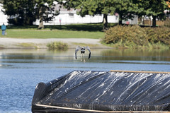 Autumn in Vancouver (Zorro1968) Tags: autumn vancouver britishcolumbia canada explorebc explorecanada insidevancouver leaves myportcity nature outdoor photos604 photography photographer sony tourism travel urban vancouverisawesome wildlife