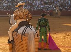 Toros en Sevilla (Francesco Merini) Tags: sevilla siviglia corrida despedida picador bullfgiht picadores realmaestranza padilla plazadetoros