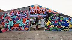 Kuu / Dok Noord - 9 sep 2018 (Ferdinand 'Ferre' Feys) Tags: gent ghent gand belgium belgique belgië streetart artdelarue graffitiart graffiti graff urbanart urbanarte arteurbano ferdinandfeys