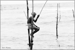 _52R4289-1 (Dream Delivered (Dreamer.Thanks for +6.000.000 vi) Tags: portrait blackandwhite fishing srilanka