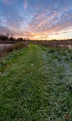 Frosty Path to Sun (Mitymous) Tags: doorcreekpark fall2018 morning reflections sunrise walk wisconsin