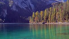 Lake Tovel (ab.130722jvkz) Tags: autumn mountains lakes italy trentino alps rhaethianalps brentadolomites