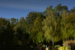 Alice is lost (Adam Malycha) Tags: water reflection summer light sky green trees mood girl lonely artiistic nikon1755 nikond7200 d7200